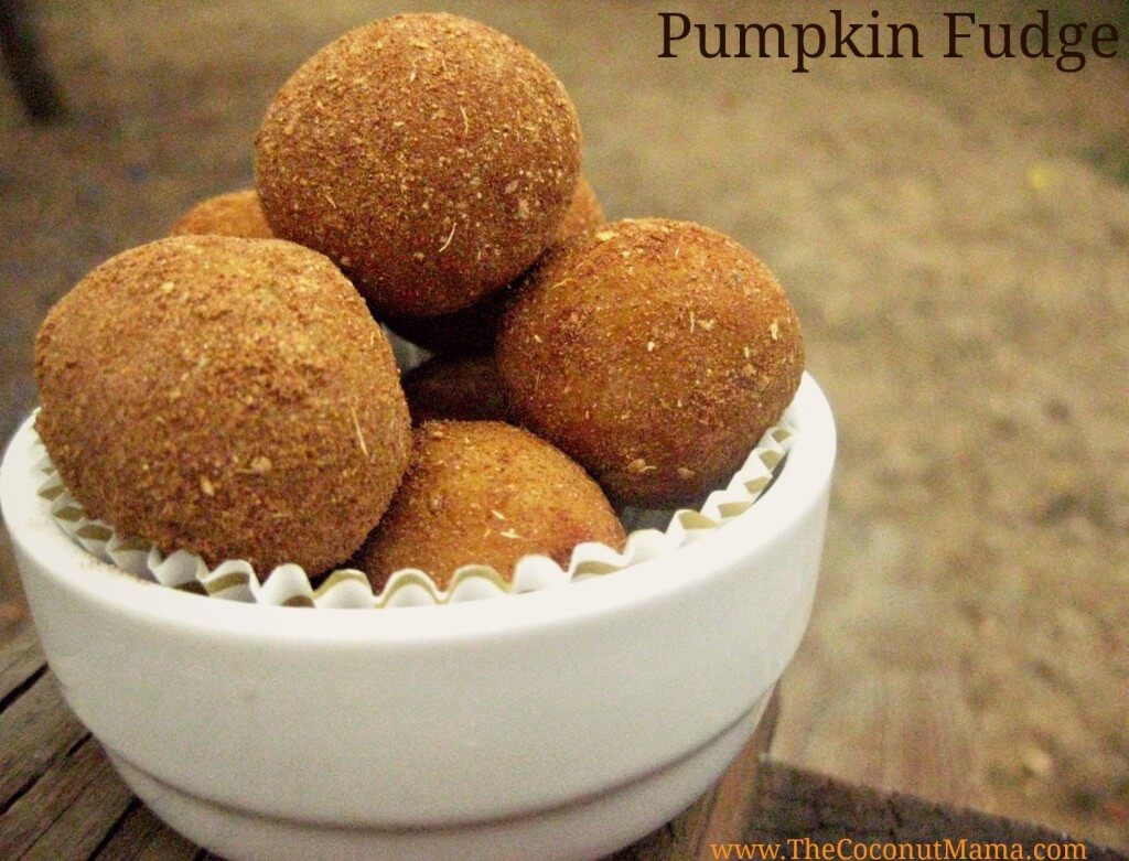 Pumpkin Fudge {Dairy Free} from The Coconut Mama