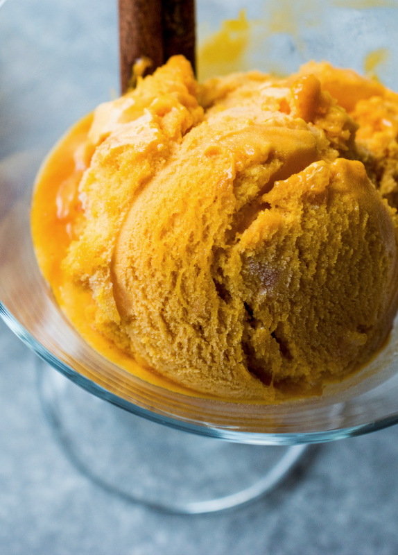 Coconut Milk Pumpkin Ice Cream Recipe - The Coconut Mama