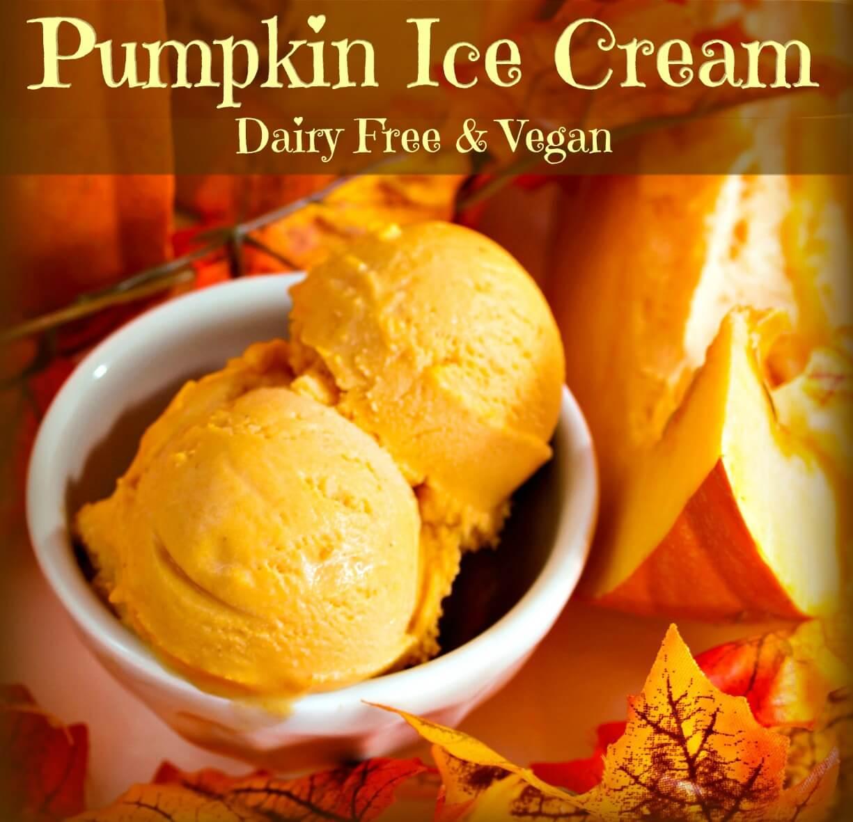 Coconut Milk Pumpkin Ice Cream - The Coconut Mama