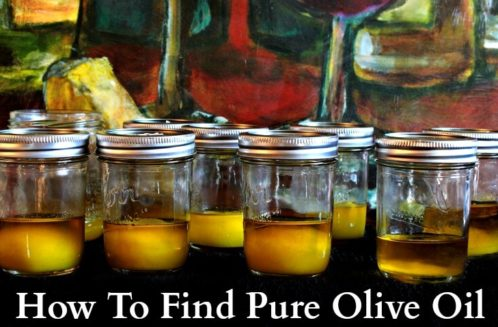 How To Find Pure Olive Oil from The Coconut Mama