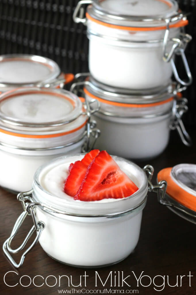 Easy 4 Ingredient Coconut Milk Yogurt Recipe