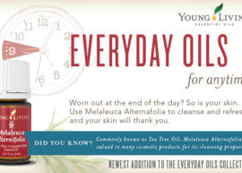 Young Living Melaleuca Essential Oil Giveaway