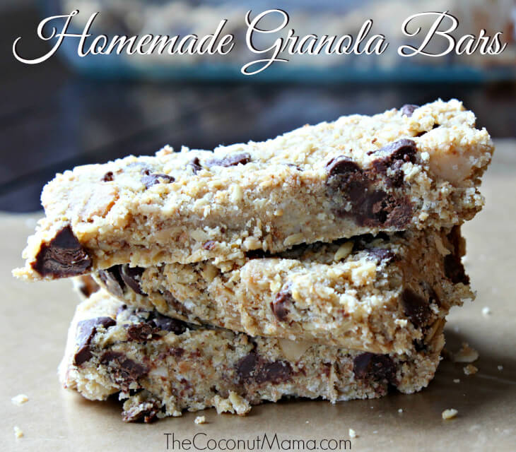 Homemade Granola Bars from The Coconut Mama