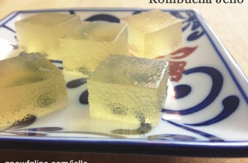Kombucha Jello from Gnowfglins