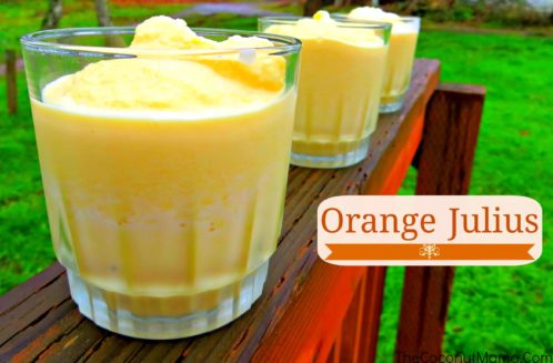 Orange Julius Recipe from The Coconut Mama