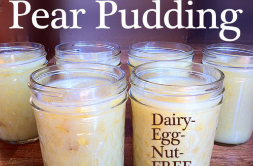 Protein Pear Pudding from Mama Natural
